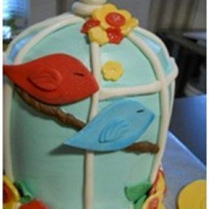 cake class1
